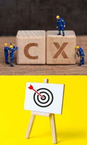introduction to CX online course objectives