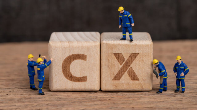 Introduction to CX August 2021 online course